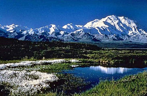 Our Journey North to Denali