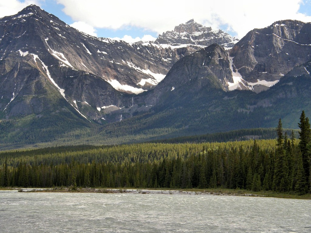 View across the Athabasca River from our campground