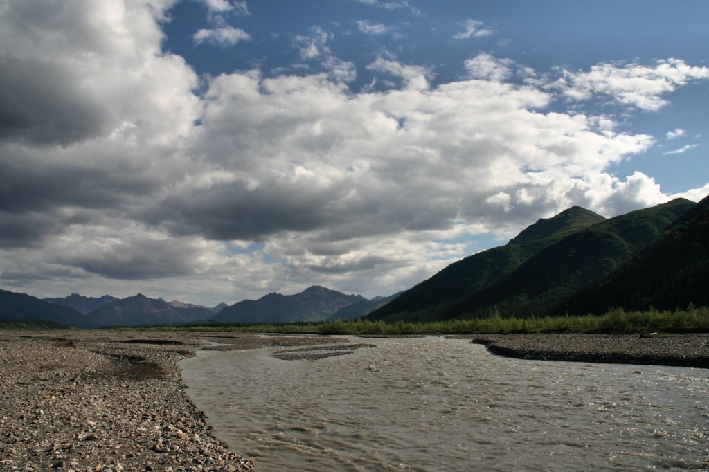 View along the Teklanika River at the campground
