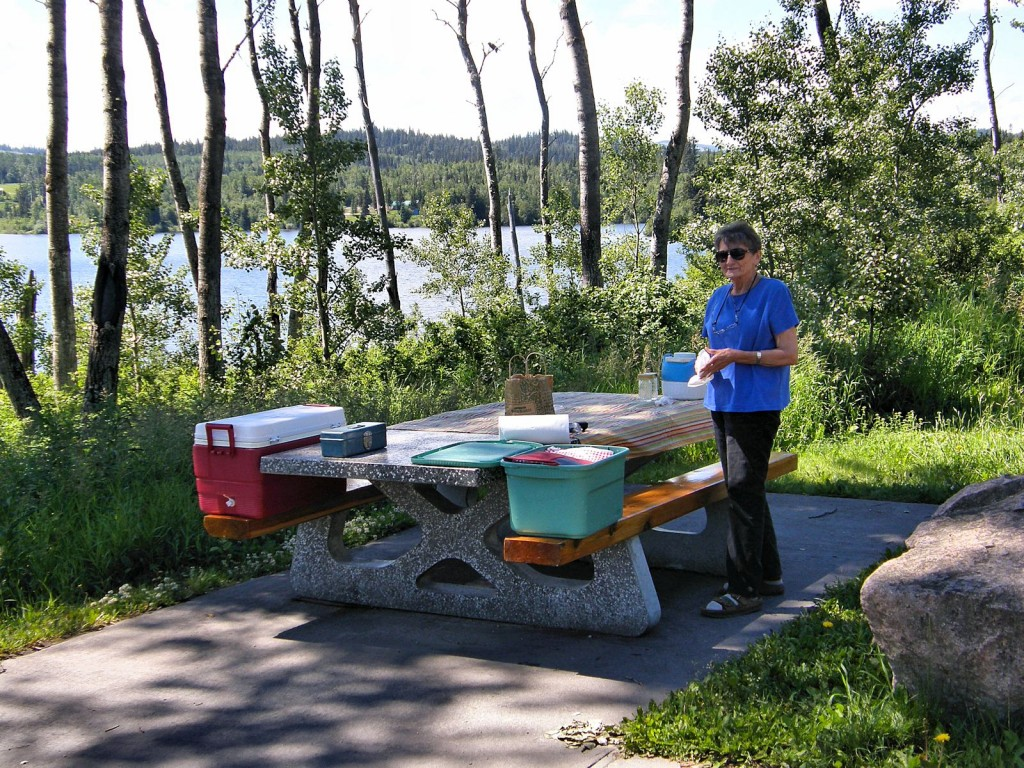 Nancy fixing lunch at rest area by one of the many lakes