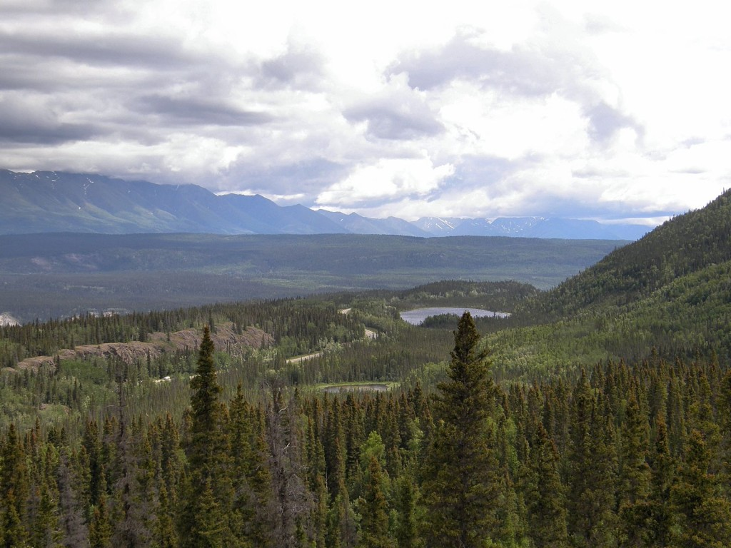 Copper River Valley from trail viewpoint
